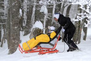 Handi ski alpin adulte